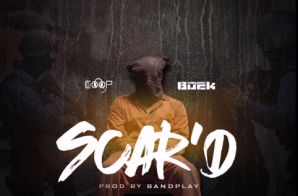 Young Buck – SCAR'D