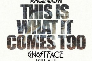 Raekwon – This Is What It Comes Too (Remix) Ft. Ghostface Killah