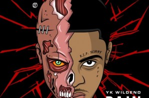 YK Wildend – Pain (Mixtape)