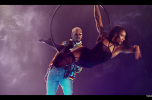 Chris Brown – Privacy (Video)