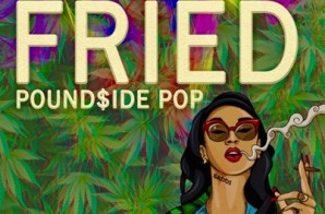 Pound$ide Pop – Fried