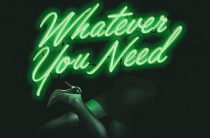 Meek Mill – Whatever You Need Ft. Chris Brown x Ty Dolla $ign