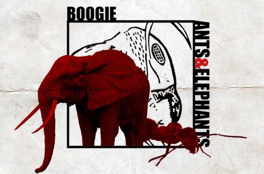 Boogie – Ants & Elephants (Project Stream)