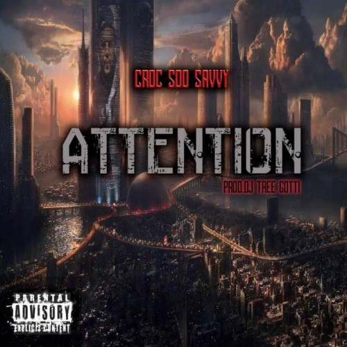 cro-500x500 Croc Soo Savvy - Attention