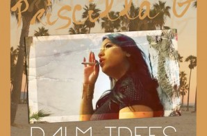 Priscilla G – Palm Trees