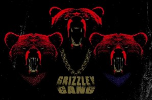 Tee Grizzly – Grizzley Gang