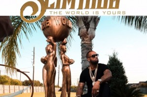 Slim Thug – Kingz & Bosses Ft. Big K.R.I.T.
