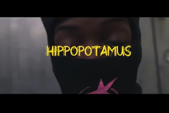 Celebrity Flash – Hippopotamus (Video) (Dir. HouseVisionz)
