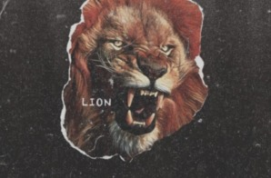 Young Pinch – Lion