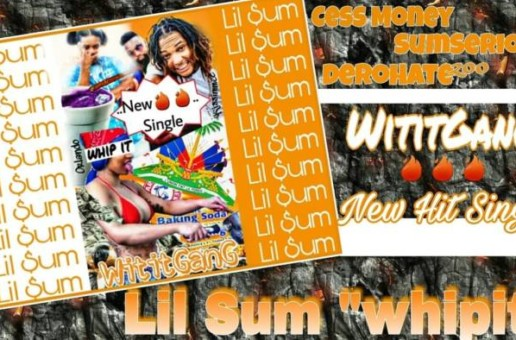 WititGanG – Lil'Sum (Whip It) (Video)