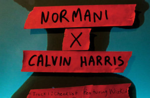 Normani x Calvin Harris – Checklist ft Wizkid/Slowdown