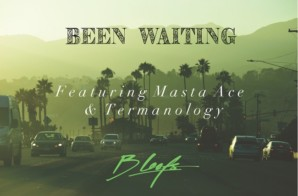 B Leafs – Been Waiting ft. Masta Ace & Termanology