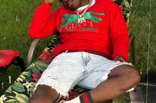 Troy Ave – Streets is a Myth (Video)