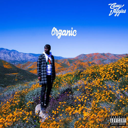 casey-veggies-organic-500 Casey Veggies - Organic (Album) Ft. YG, E-40, Dom Kennedy & More