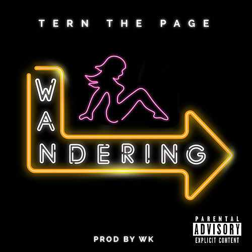 ternwandering Tern The Page - Wandering (Video)