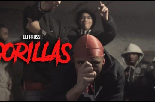 Eli Fross – Gorillas (Video By MeetTheConnectTv)