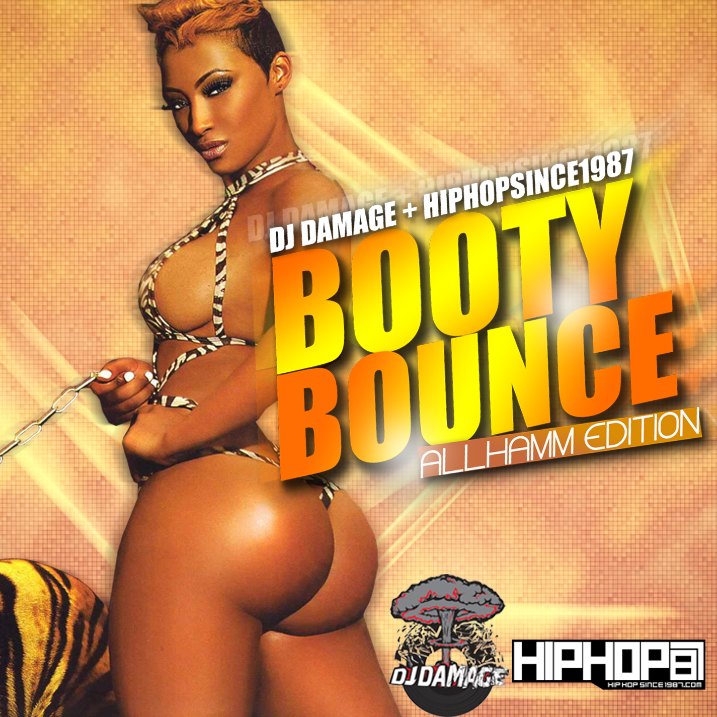 dj-damage-hhs1987-booty-bounce-hamm-edition-mixtape-HHS1987-2013 DJ Damage x HHS1987 - Booty Bounce (All Hamm Edition) (Mixtape)