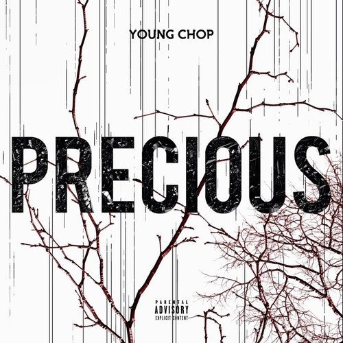 7266d6c84fb8c089471f21b7649cfa51 Young Chop – All We See Is Green Ft. Fat Trel, Johnny May Cash & YB