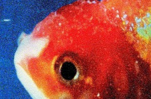 Vince Staples Releases Tracklist for 'Big Fish Theory'