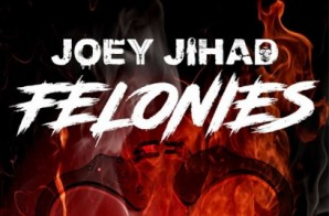 Joey Jihad – Felonies (Audio)