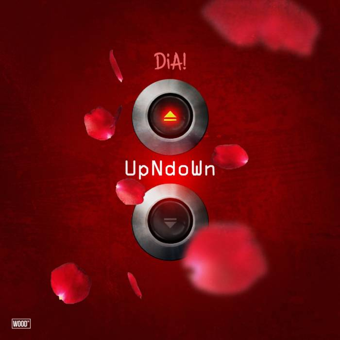 IMG_8169 Dia! - Up & Down (Video)