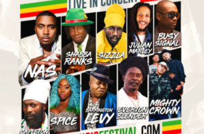 Julian Marley & Everton Blender Join Nas, Shabba Ranks, Sizzla & More at 9 Mile Music Festival in Miami!