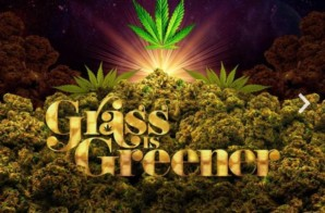 "Salaam Remi – Netflix's ""Grass is Greener"" Soundtrack"