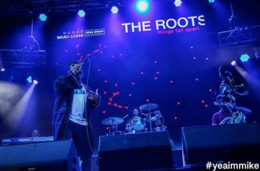 Event Recap: The 12th Annual Roots Picnic