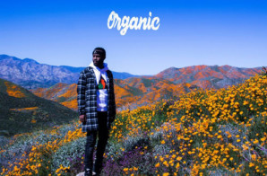 Casey Veggies – Organic (Album) Ft. YG, E-40, Dom Kennedy & More