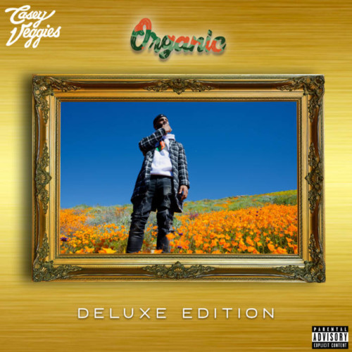 Organic-Deluxe-Artwork-500x500 Casey Veggies - Organic (DLX) LP Trailer (Video)