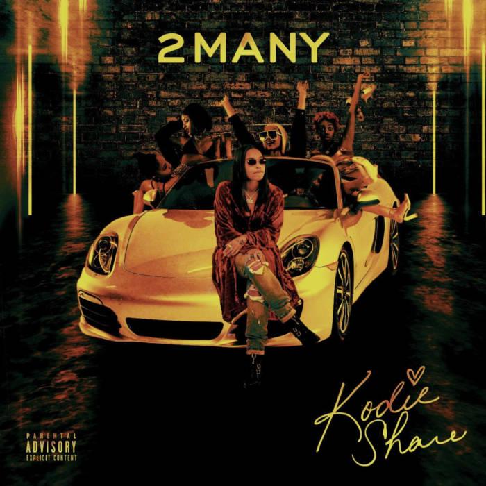 "KODIE SHANE Returns With New Single ""2 Many"""