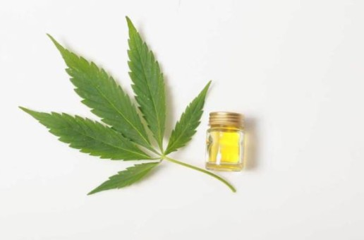 CBD Oil: Essential Remedy for Musicians