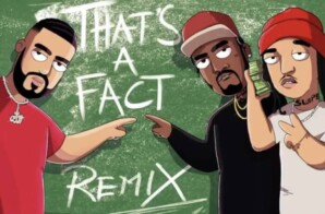 "FRENCH MONTANA RELEASES ""THAT'S A FACT"" REMIX FT MR. SWIPEY AND FIVIO FOREIGN"