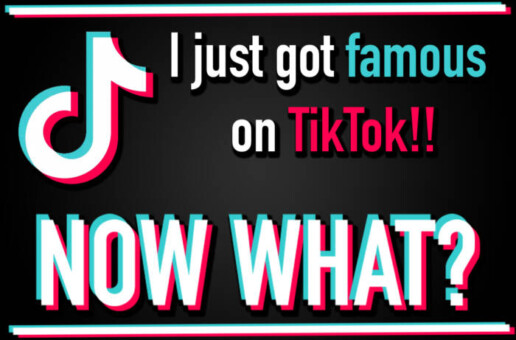 I Just Got Famous on TikTok, Now What?
