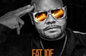 Fat Joe – The Making Of A Don (Vol. 6)