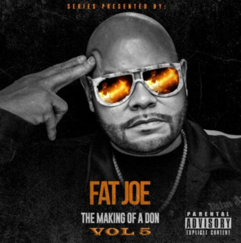 fatjoe-496x500 Fat Joe - The Making Of A Don (Vol. 6)