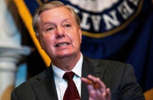 LINDSEY GRAHAM SAYS YOUNG BLACK PEOPLE 'CAN GO ANYWHERE' IN SOUTH CAROLINA AS LONG THEY ARE CONSERVATIVE