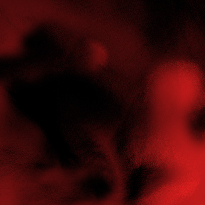 3ff4ce02-8b35-422b-822f-d4eabf6522ce-2 HHS87 End of the year top album list!