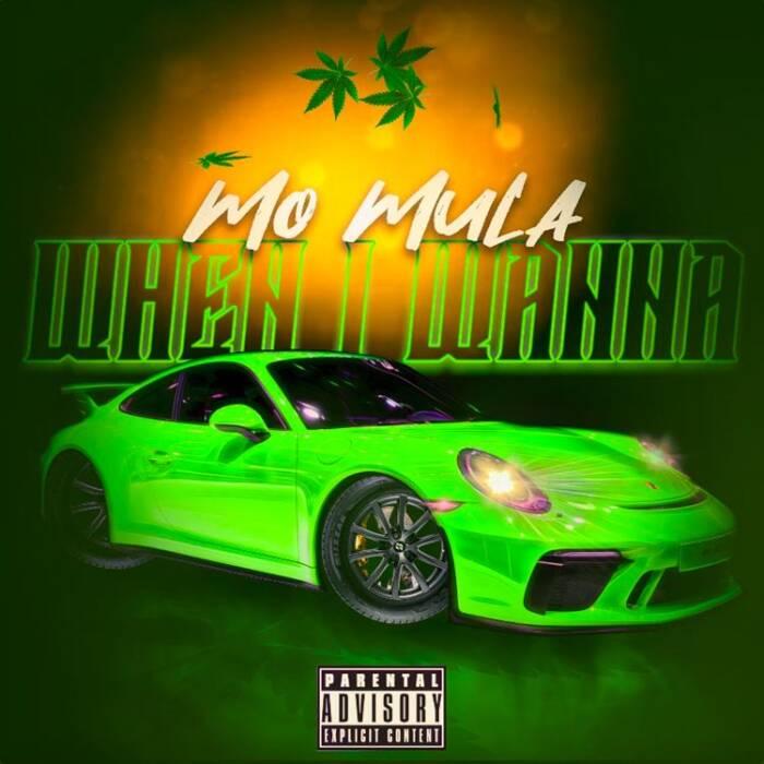 when-i-wanna Mo Mula - When I Wanna (Video)