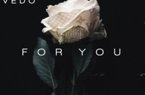 "Richie Evans ft. Vedo – ""For You"""